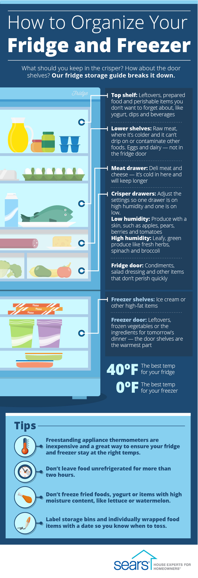 Amazing Tips to Storing Food in the Fridge
