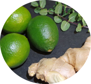Immunity-Boosting-–-Mint-Ginger-Lime-Juice-Recipe