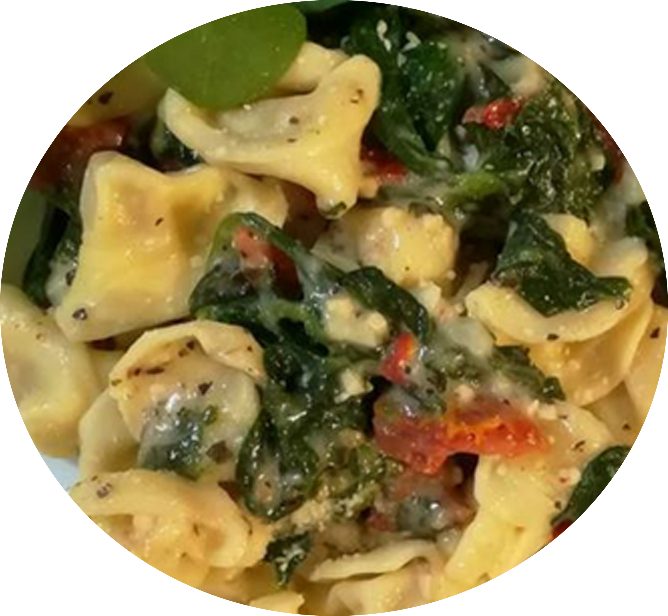 Mozzarella-and-Spinach-Tortellini-with-Sun-Dried-Tomatoes-Recipe